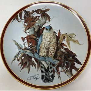 Hamilton Collection Birds Prey Cooper's Hawk Plate